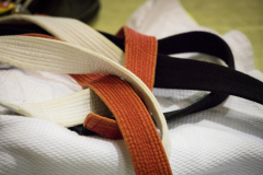 210_DHM_Judo_2018_Benedikt_Ziegler